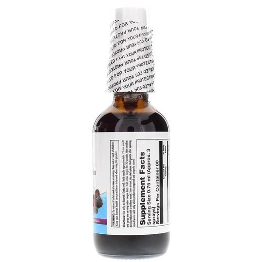 b-12-2500-mcg-methylcobalamin-activspray-KAL-bry