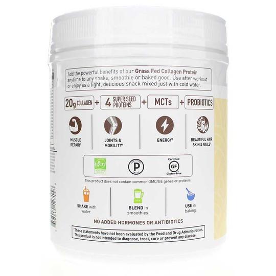 collagen-protein-GOL-choc