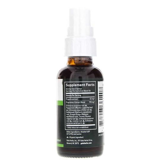 Echinacea Goldenseal Propolis Throat Spray