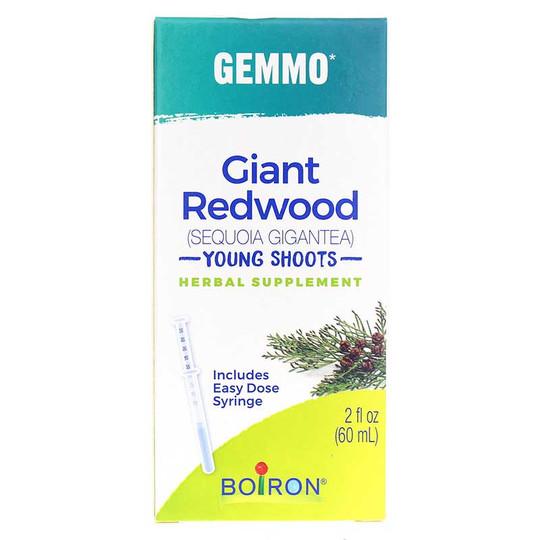 Gemmo Giant Redwood