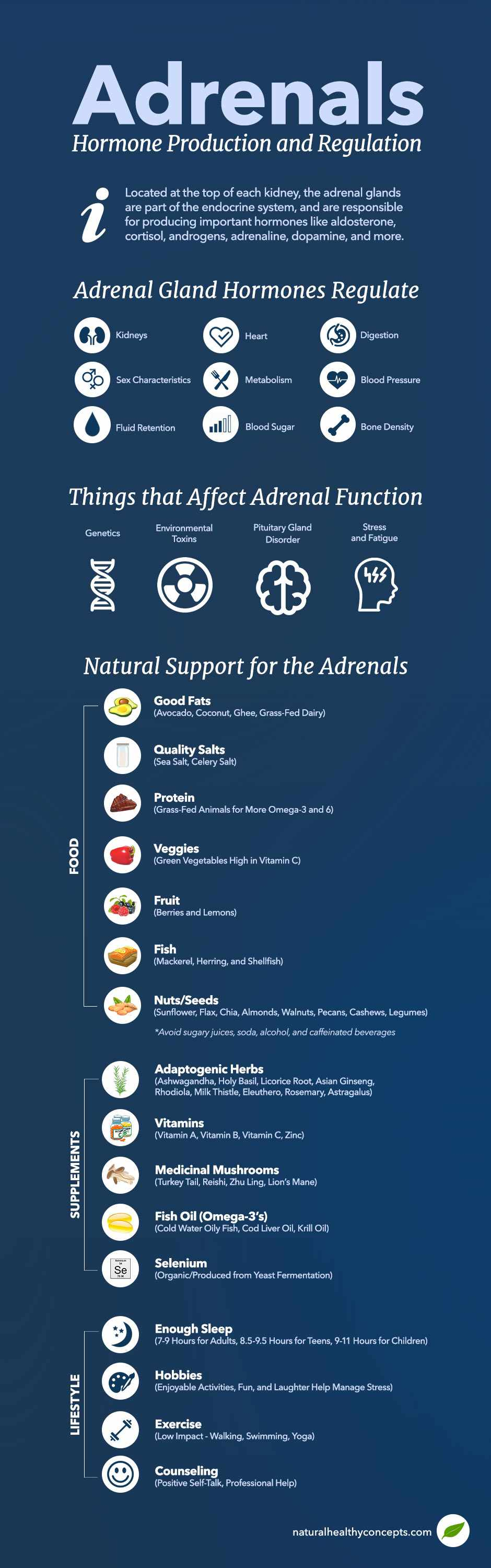 adrenal support infographic