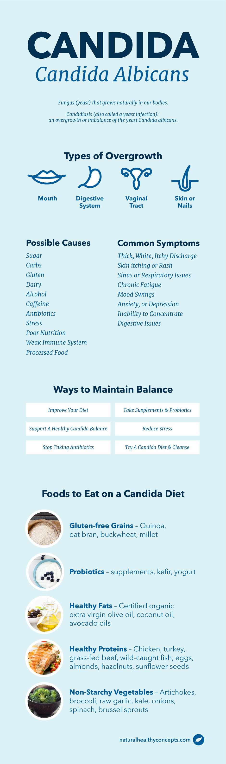 candida infographic