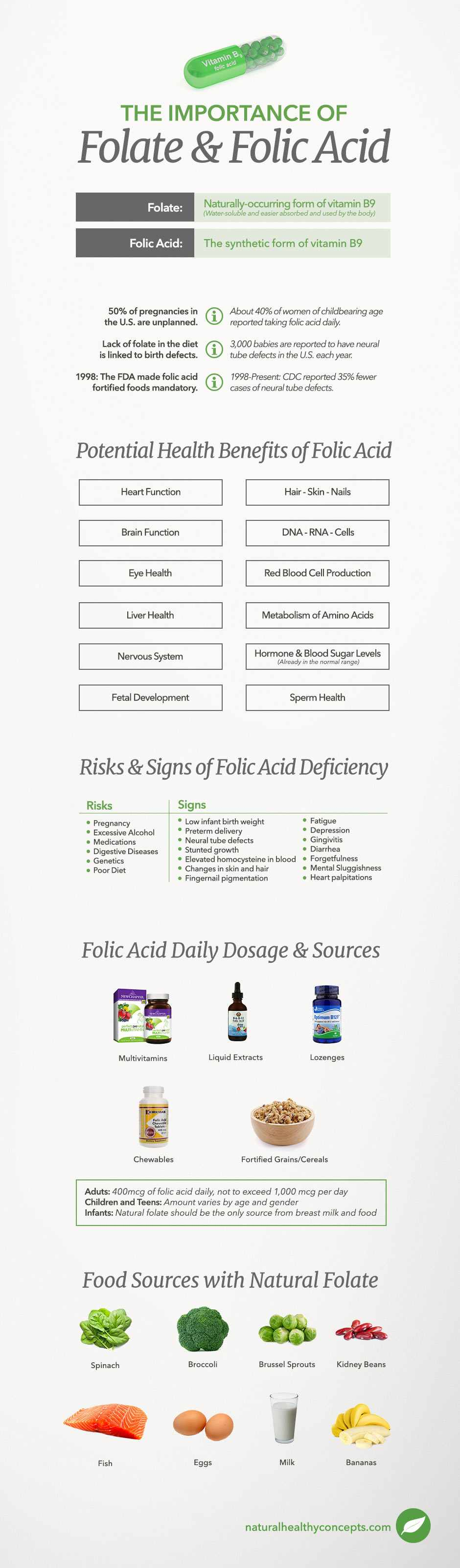 folic acid infographic