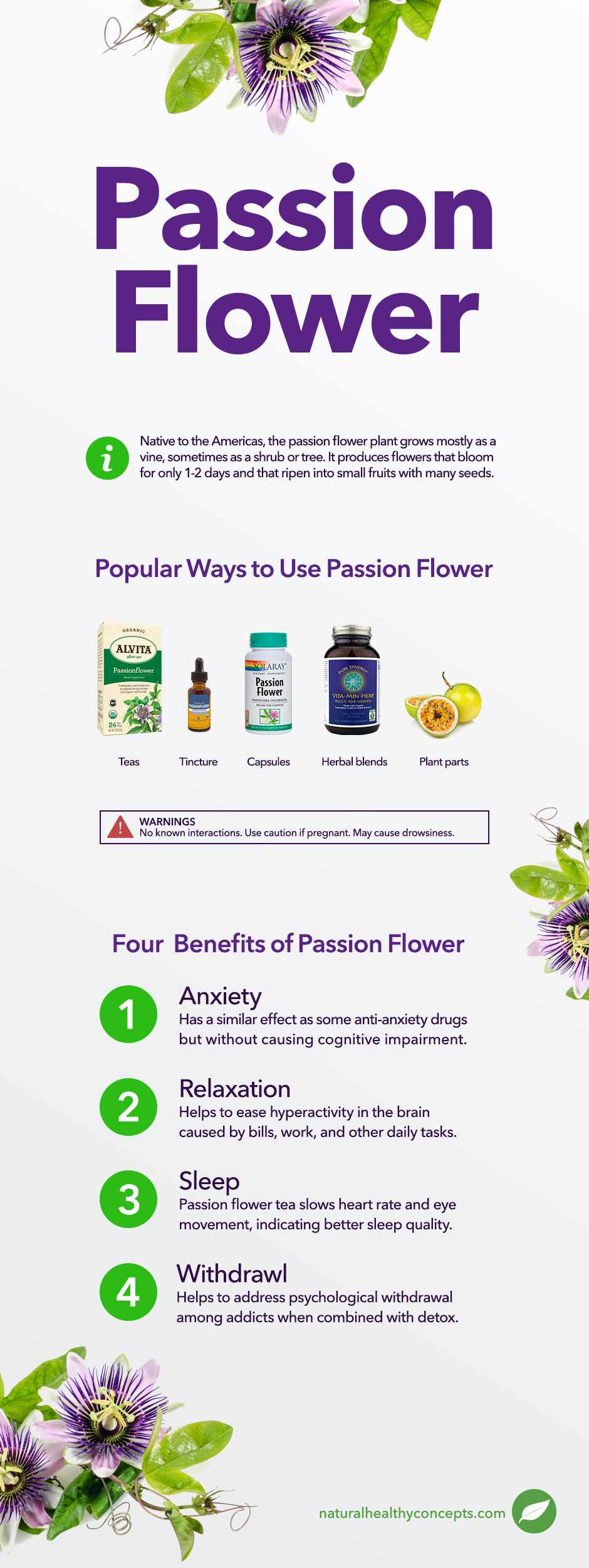 passion flower infographic