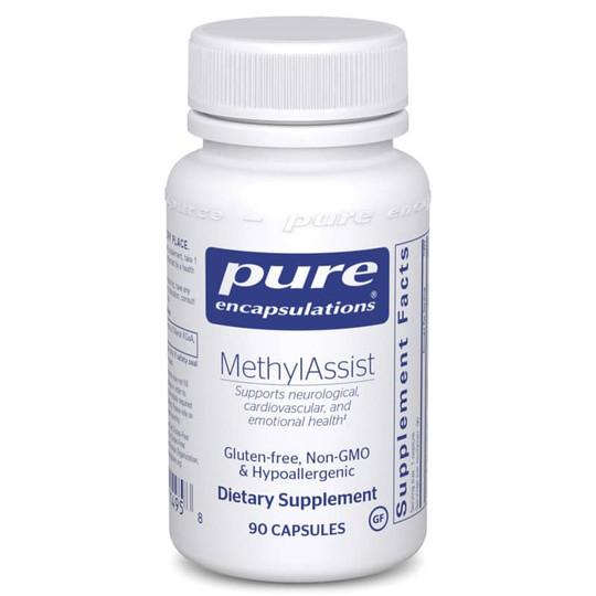 MethylAssist