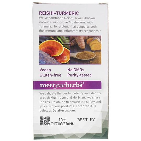 Mushrooms + Herbs Reishi + Turmeric