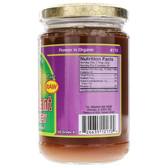 Raw Antioxidant Power Honey